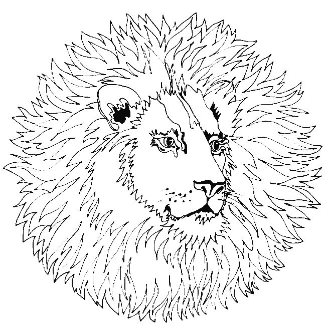 Printable Coloring Pages Of 35 Animal Mandala 5553