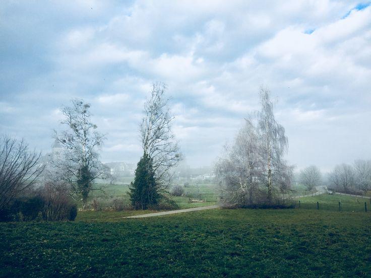 Misty Winter Wonderland