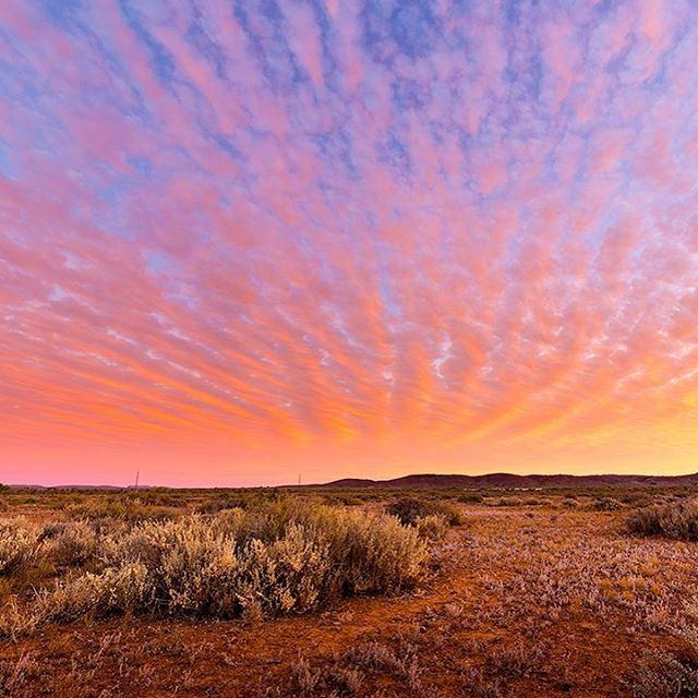 Now this is what we call a mind-blowing outback sunset! (via IG/mattographybymw at #FlindersRangers in @southaustralia)