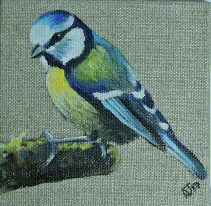 Blue tit Miniature painting, Bird Artwork, Art, Animals, Framed and Ready to Hang, One of a kind gift by AlexJaborePaintings on Etsy