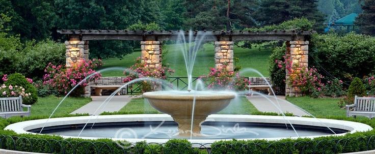 Rose Garden Loose Park Kansas City Mo Photos Kc Stuff