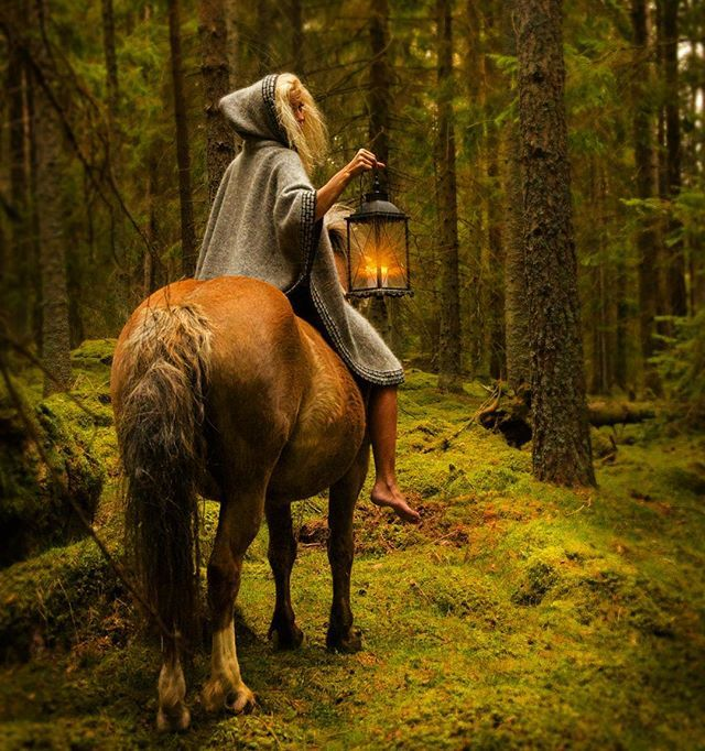 """Wander into the enchanted forest She says """"Gnomes and trolls top my list of favorite creatures. Small, but powerful. Ingenious little beings that make life more interesting. They make the woods more living and mystic. They know every rock and tree, and when you don't see them - they always see you."""" Faerietale..."""