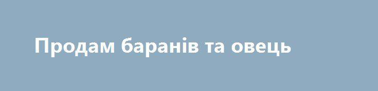 Продам баранів та овець http://yampil.info/archives/23633.html  Баранів, овець тел. 0963719528 _______________________________________________________________ «Голос часу» та Ямпіль.INFO оголошують вигідну акцію для рекламодавців: при розміщенні приватного оголошення на сторінках районної газети – воно безкоштовно з'явиться і на сайті yampil.info. Таким чином з вашою пропозицією зможе ознайомитися значно більша кількість людей. Акція діятиме з 1 липня по 1 жовтня. В ній можуть взяти участь…