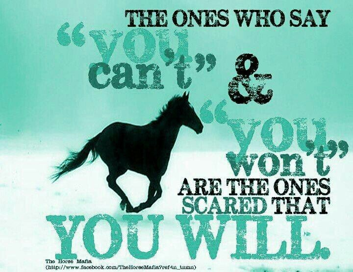 Cowgirl Quotes 49 Best Cowboy Quotes Images On Pinterest  Res Life Country Living