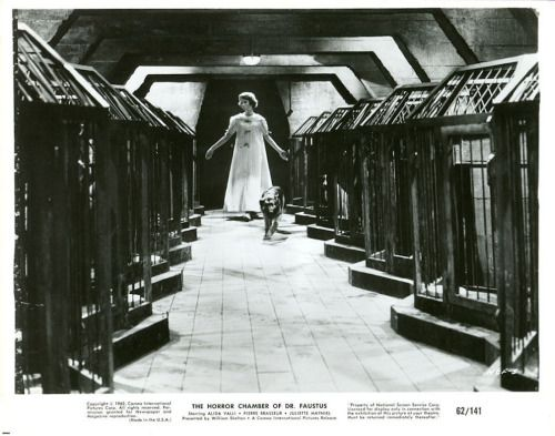 greggorysshocktheater:  Eyes Without a Face (1960) released in the US as The Horror Chamber of Dr. Faustus