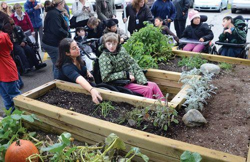 11 best images about sensory garden on pinterest gardens for Garden design ideas for disabled