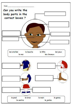 BODY PARTS FRENCH WorksheetMatching and Writing by YippeeLearning