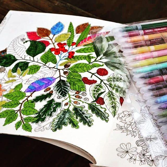 Kolorowa jesień  #johannabasford #kolorowanki #beautiful #koloruje #kolorowanka #color #basford #coloringbook #tajemnyogrod #love #colors #colorpencils #tajemny #kolorowanie #secretgarden #coloring #secretgardenaninkytreasurehunt #relax #mazaki #nk #garden #colour #instagram #colorful #ogrod #koloruj #naszaksiegarnia #happytime #creative #rysuj