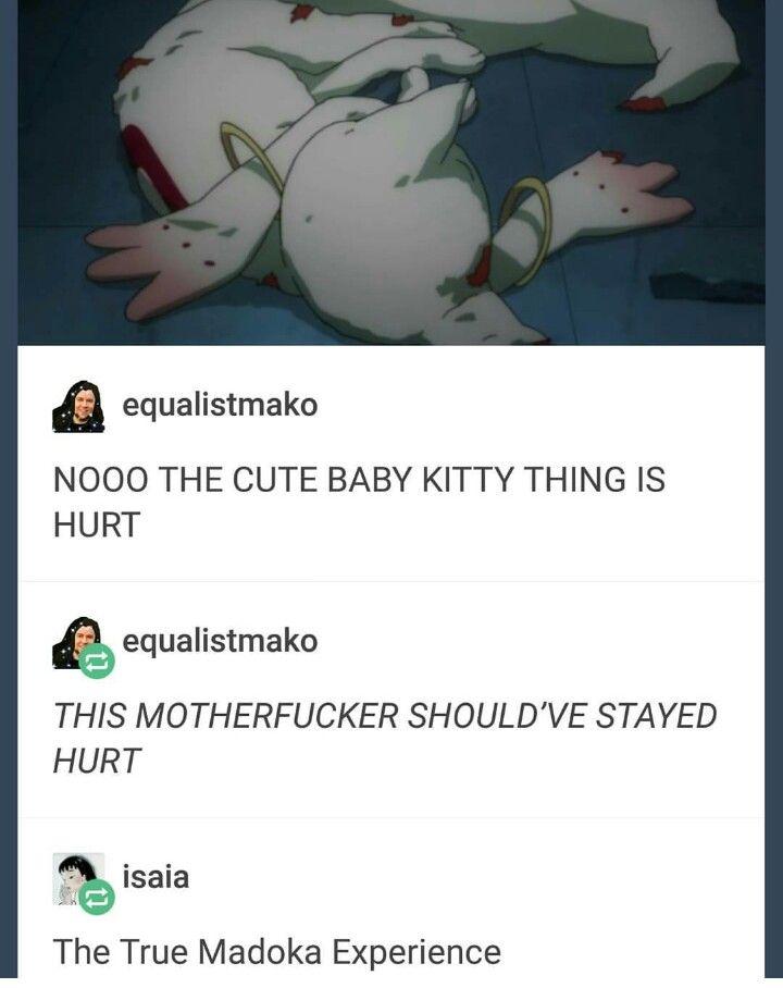 Tumblr Anime