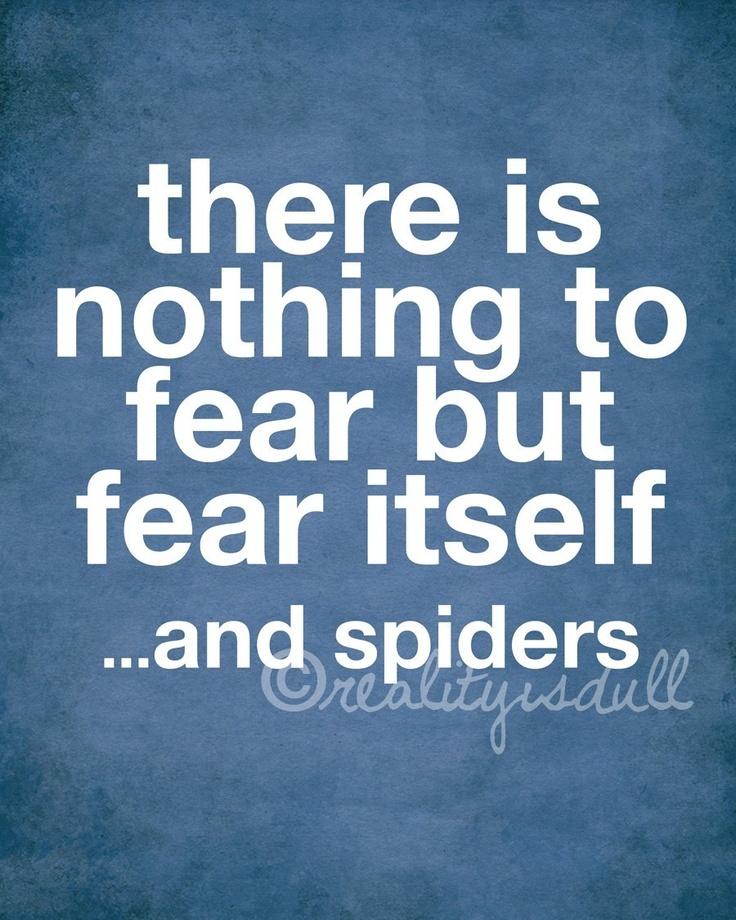 Damn spiders