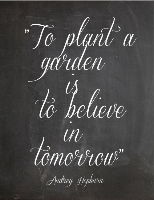 quotes 6  garden quotes tomorrow is become plant in the future