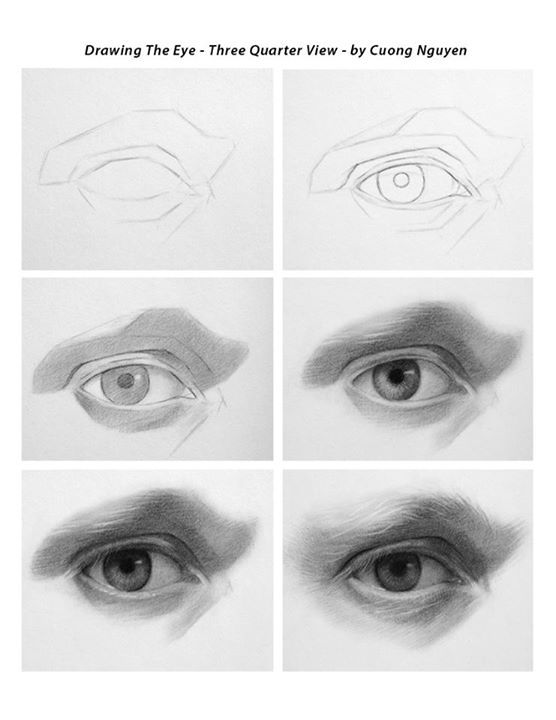 Drawing the Eye - 3/4 View step by step by Cuong Nguyen https://www.facebook.com/icuong?fref=photo