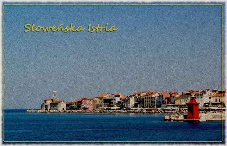 Podróże kulinarne: Istria słoweńska 2013