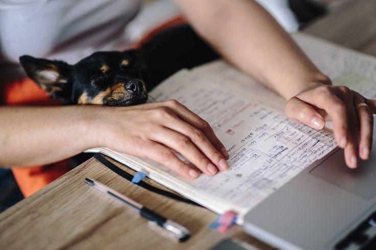 Organizacja pracy, jak planować posty na bloga.  Notatnik.