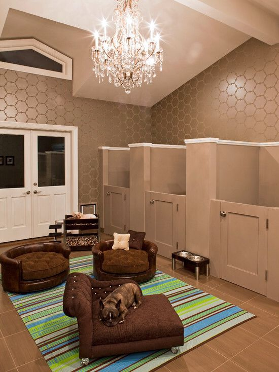 So doing this for my 3 dogs in the new house!  Dog room gone to the extreme!