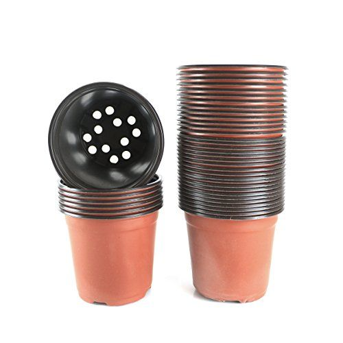 http://picxania.com/wp-content/uploads/2017/09/6-inch-plastic-flower-seedlings-nursery-supplies-planter-potpots-containers40-pack.jpg - http://picxania.com/6-inch-plastic-flower-seedlings-nursery-supplies-planter-potpots-containers40-pack/ - 6 Inch Plastic Flower Seedlings Nursery Supplies Planter Pot/pots Containers,40 Pack -   Price:    Features:  40 pcs plastic flower pots  It is very light weight, soft thin plastic, it deforms under hands pressure Holes at the bottom Very