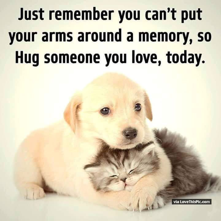 Just Remember You Cant Put Your Arms Around A Memory So Make Sure You Hug Someone You Love Today