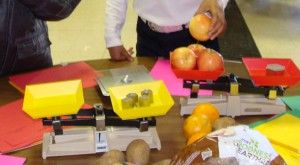 Weigh Station.  Does it weigh a pound? Math Night