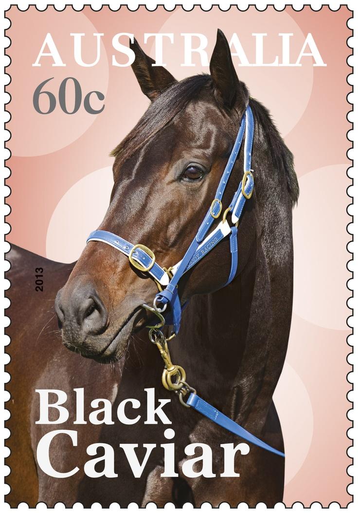Australia's own champion racehorse, Black Caviar.
