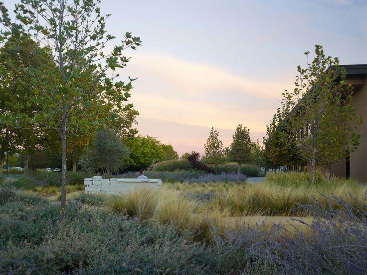 175 best Designing Gardens images on Pinterest Landscape design