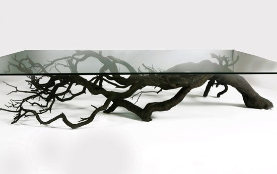 Tree Coffee Table Design by Sebastian Errazuriz