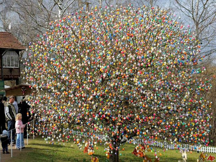 Easter egg tree. Nuts!