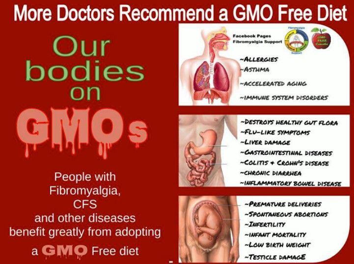Smart Health Talk Pick: MDs recommend GMO free diet. Jeffrey Smith, Genetic…