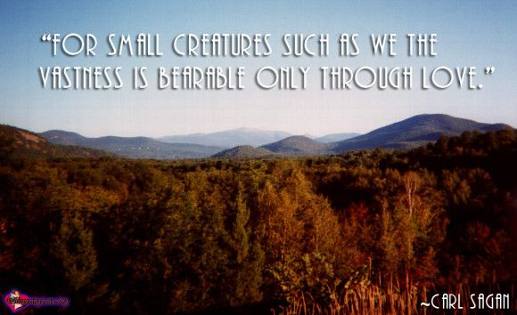 """""""For small creatures such as we the vastness is bearable only through love."""""""