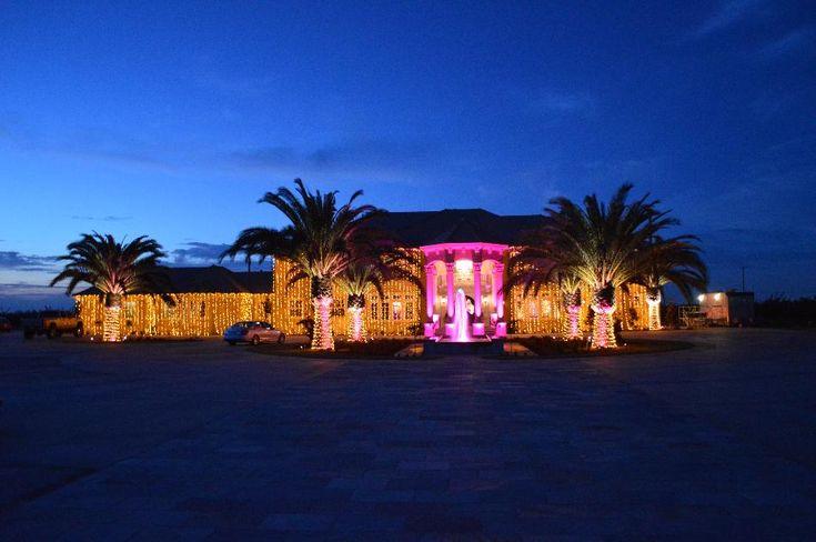 UpLighting and Gold LED Christmas Lights