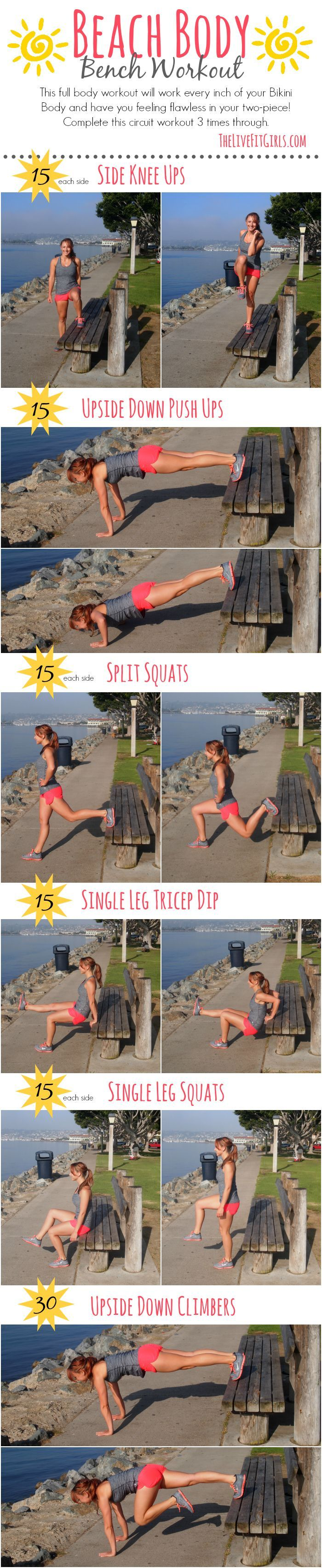 Beach Body Bench Workout ☀️ a full body workout that will get you bikini ready in no time!