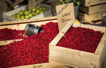 Krösamos (Lingonsylt) Småländska smaker och rätter | Visit Småland