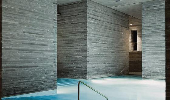 natuursteenstrips, zwembad