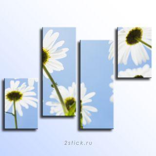 Модульная картина от 2stick.ru Ромашки на фоне лазурного неба