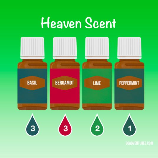 """Try this diffuser recipe using Basil, Bergamot, Lime, and Peppermint essential oils. Please """"LIKE"""" me on Facebook: https://www.facebook.com/EOAdventureswithBecky ~~ Need to purchase oils? You can find out more information at https://www.youngliving.com/signup/?sponsorid=2385830&enrollerid=2385830 ~~"""