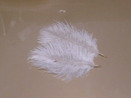 Lot of 100 Baby Ostrich Feathers  Champagne by simplysilverbyheena, $21.00