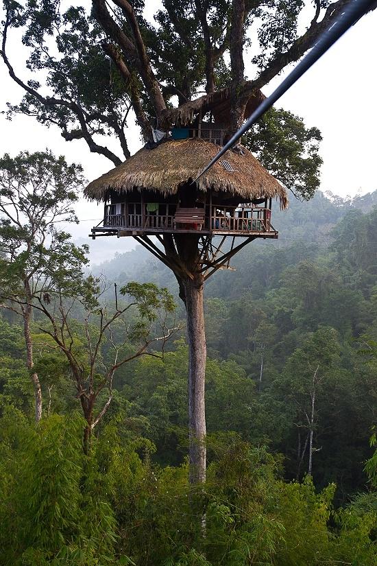 Die 25+ Besten Ideen Zu Baumhäuser Auf Pinterest   Kinder ... Wendeltreppe Um Einen Baum Baumahus