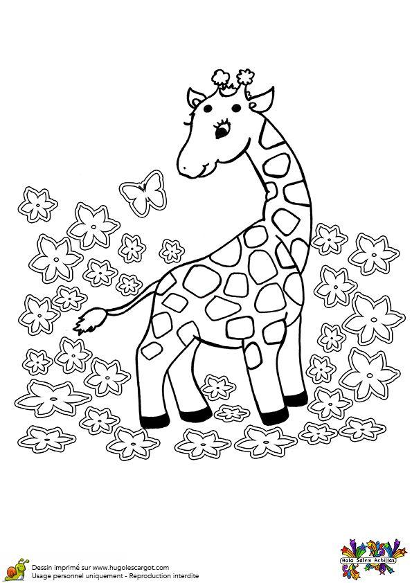 Les 25 meilleures id es de la cat gorie coloriage girafe sur pinterest giraffe dessin girafe - Coloriage de girafe ...
