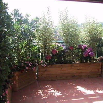 Terrazze arredate con piante cerca con google terrazze - Piante fiorite ...