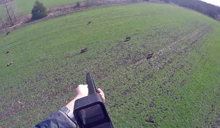 #helicopter_hog_hunting, #Texas