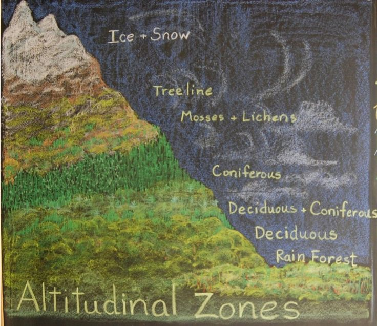 Waldorf ~ 6th grade ~ Geology & Mineralogy ~ Altitudinal Zones ~ chalkboard drawing