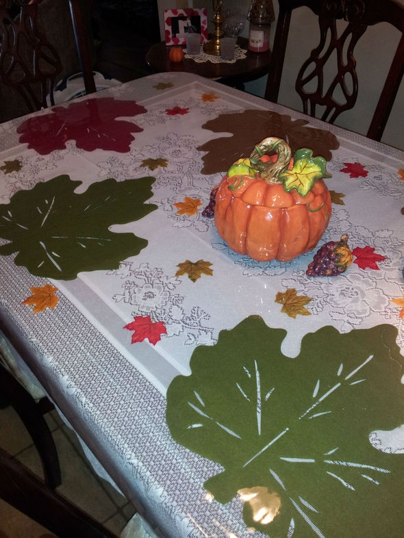 Wonderful Creative Idea For Using Clear Plastic Tableclothes. Tablecloth ...