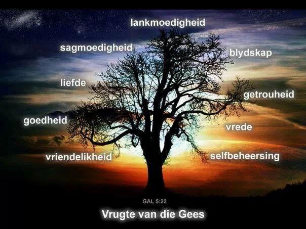 Sonde teen die Heilige Gees - wwwbybelkenniscoza