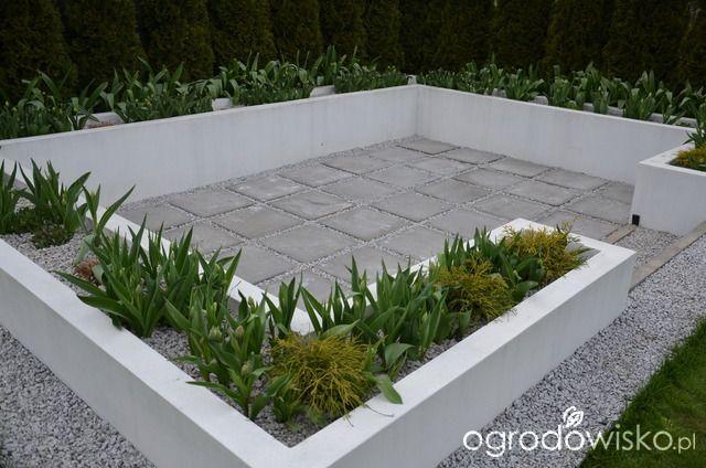 """Jak """"ożywić"""" mój szmaragdowy ogród - strona 951 - Forum ogrodnicze - Ogrodowisko"""