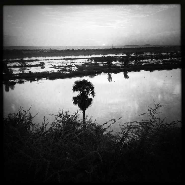Shot by Arnaud Contreras #Niamey #Niger