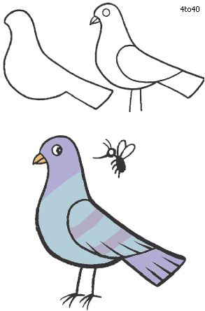 Pigeon Drawing Drawings Pinterest Pigeon Drawings And Art