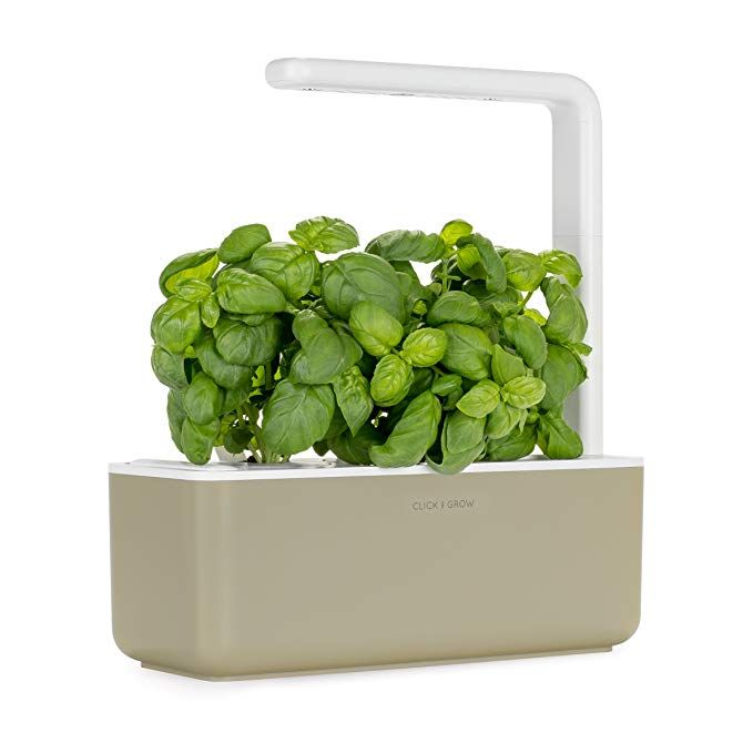 Click Grow Smart Garden 3 Indoor Gardening Kit Includes Basil Capsules Beige Herb Garden Kit Indoor Gardening Kit Herbs Indoors