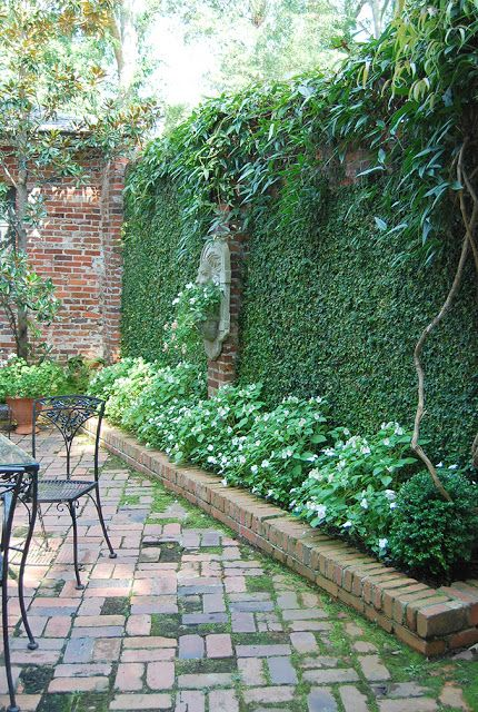 patio with brick covered in fig vine and raised planters