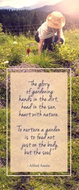 Beautiful and inspiring quote about Gardening.