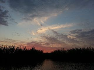Pescuit sportiv în Delta Dunării: Pescuit la stiuca ... in Delta Dunarii – Canalul B...