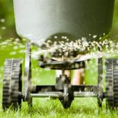 Slow release, organic lawn fertilizer benefits your soil while providing nutrients for your grass. Not only does it improve soil structure, it encourages beneficial soil microbes that attack pests and diseases.